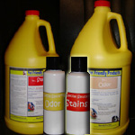 Best Pet Odor & Stain Removers